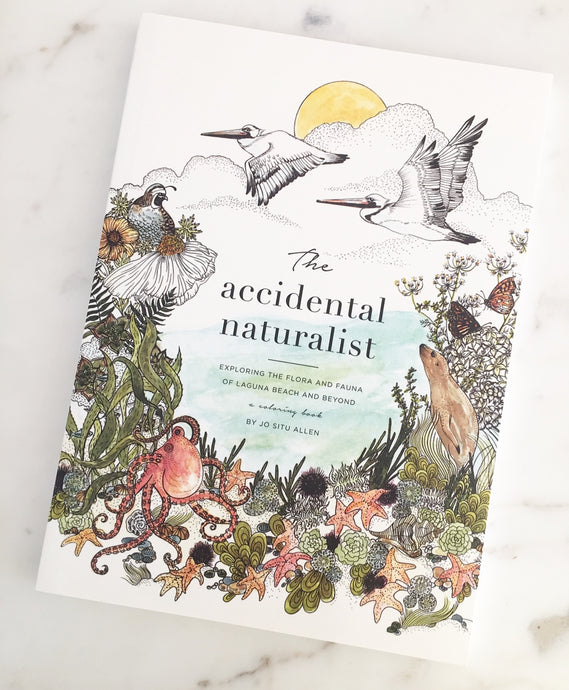 The Accidental Naturalist:  Exploring Laguna Beach and Beyond