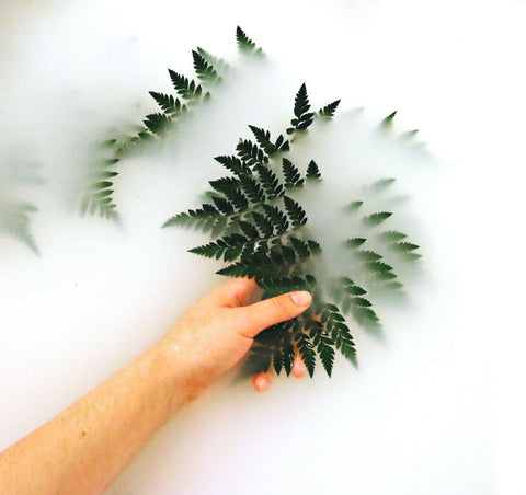 Person lifting dark green leaves from milky waters for Ivy Leaf Skincare
