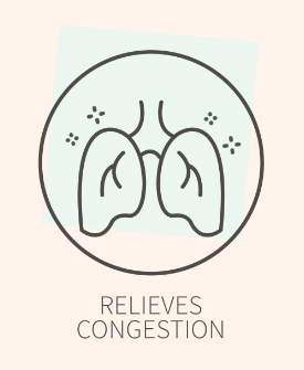 Relieves Congestion icon, for Ivy Leaf Skincare blog
