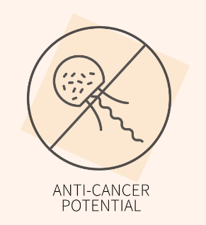 Anti-cancer icon, for Ivy Leaf Skincare blog