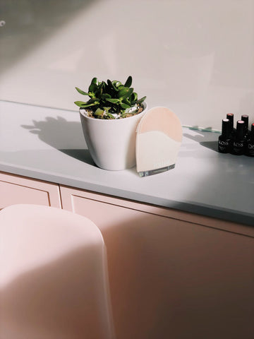 Ivy Leaf Facial Scrubber on pale pink countertop, next to green potted plant, for Ivy Leaf Skincare