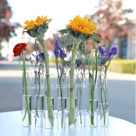 Invisible Test Tube Propagation Vase Set