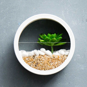 Minimal Round Transparent Wall Planter