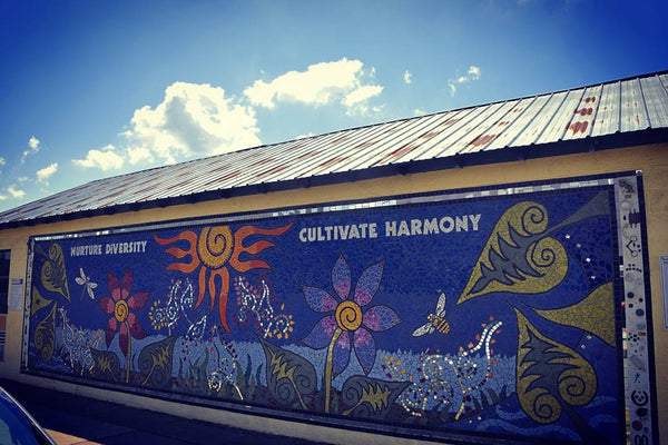 Hoodie Goodies- 5 Ways to Get Involved in Building Your Local Community- Cultivate Harmony Spread Diversity, Fredericksburg Virginia Roxbury Farms