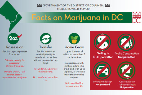 Hoodie Goodies- Understanding Washington DC Cannabis- Infograph on DC Weed Laws