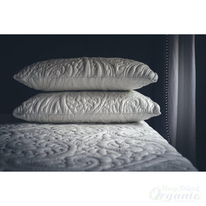 Posh+ Lavish Pillows-Posh+Lavish-Sleep Naked Organic Mattress Store