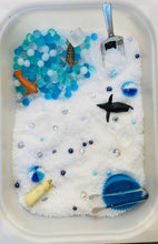 Load image into Gallery viewer, Creative Kits Artic Sensory Kit