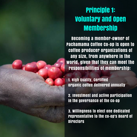 Principle 1: Voluntary and Open Membership