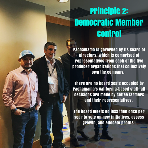 Principle 2: Democratic Member Control