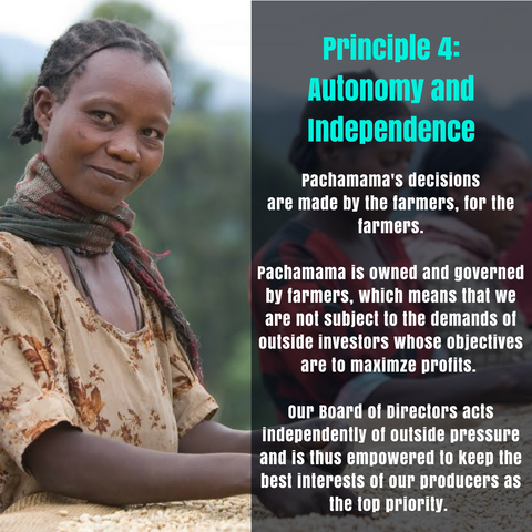 Principle 4: Autonomy and Independence