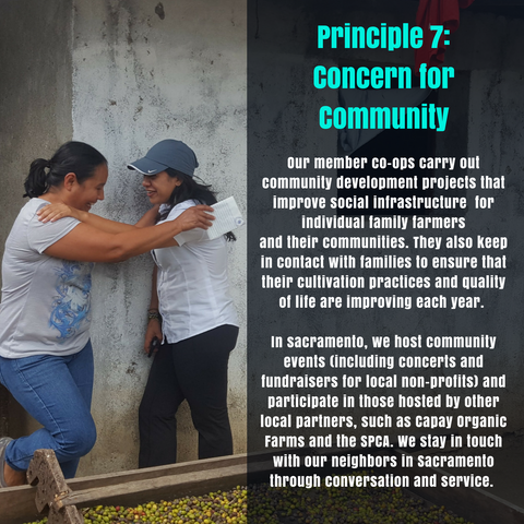Principle 7: Concern for the Community