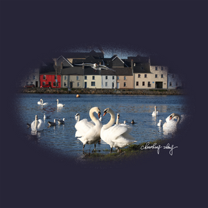 Claddagh Swans At Long Walk