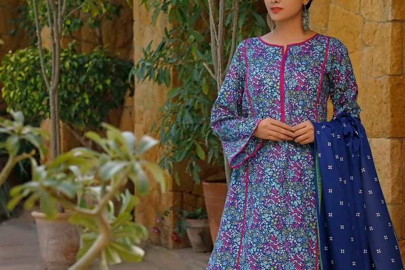 Daman Printed Lawn Collection 20-02B