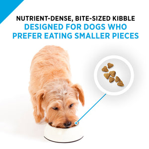 Purina Pro Plan Focus All Life Stages Small Bites Lamb & Rice Dry Dog Food