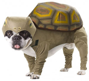 Animal Planet Tortoise Dog Costume