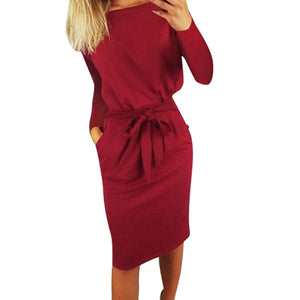 Casual elegant winter pockets dress