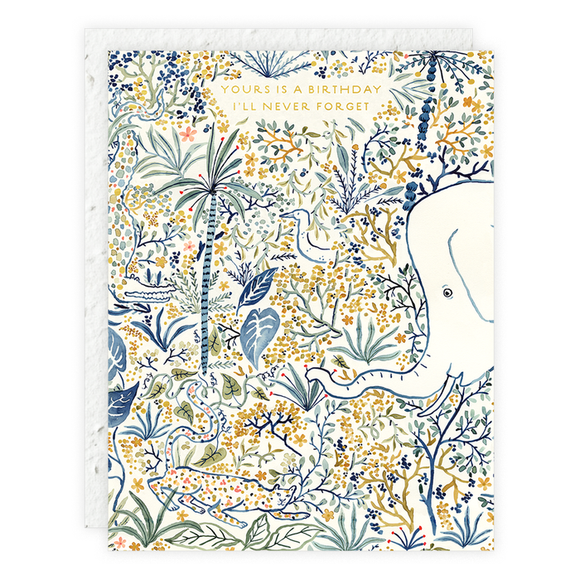 Hidden Animals Plantable Birthday Card