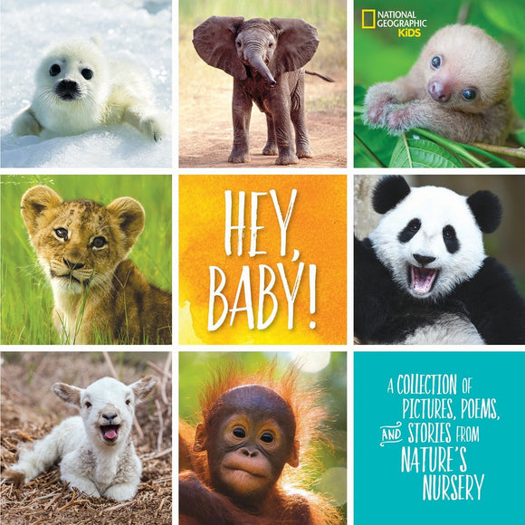 Hey, Baby! National Geographic Kids Book