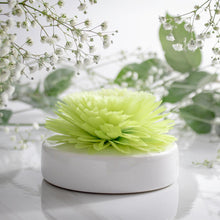Load image into Gallery viewer, Tea Blossom Floral Diffuser