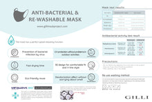 Load image into Gallery viewer, Adult Grey Anti-Bacterial Mask