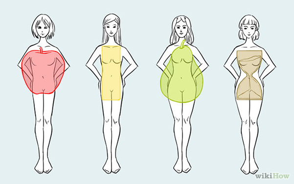 Different_body_shapes