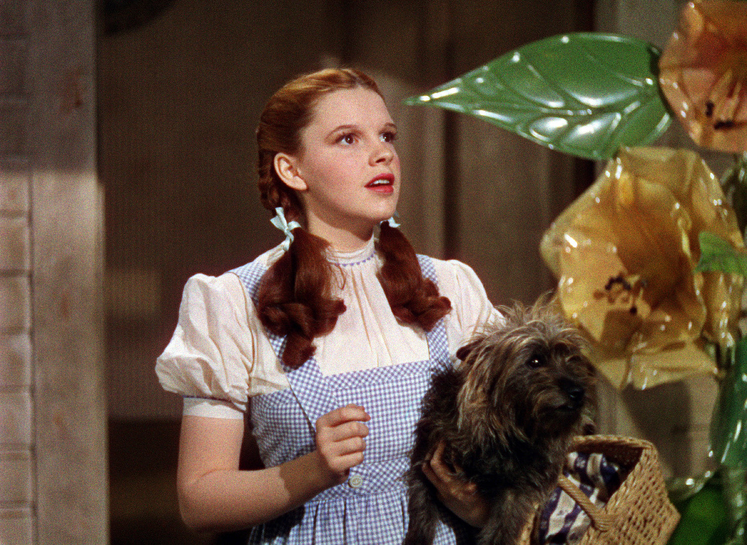 ic: The Wizard of Oz (1939), Everett Collection