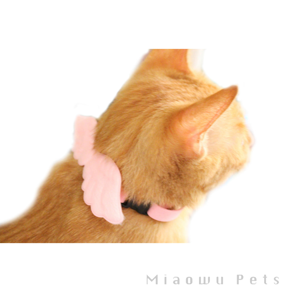 Pet Angel's wings Collar