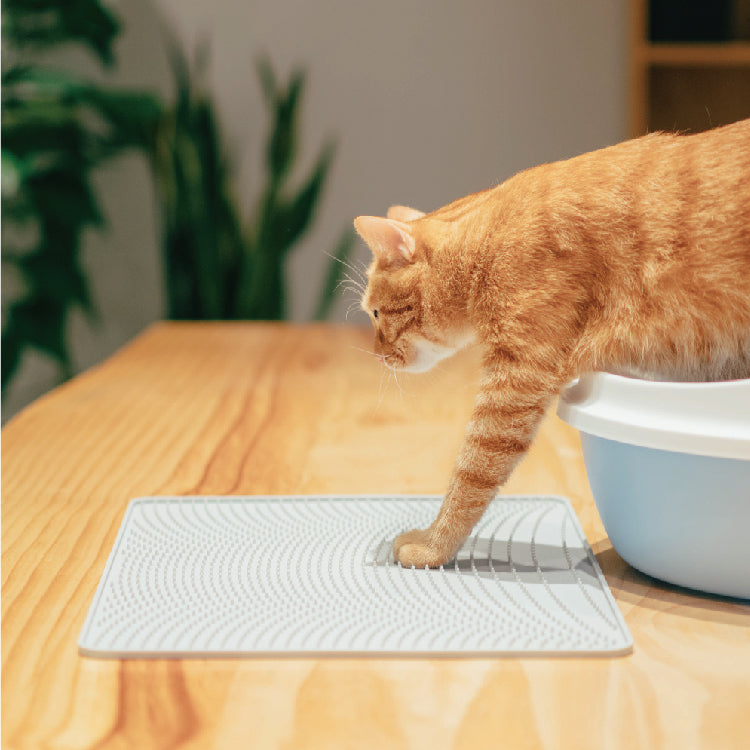 Pidan Cat Litter Mat