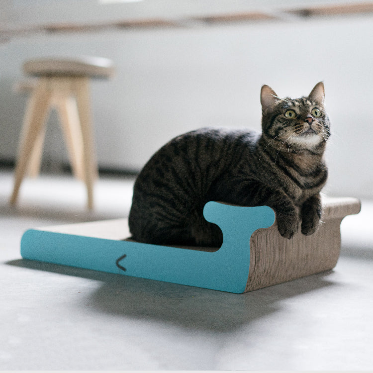 Pidan Cat Scratcher - Whale