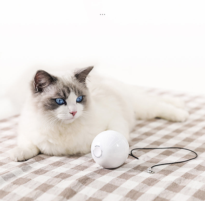 HomeRun Smart cat toy ball