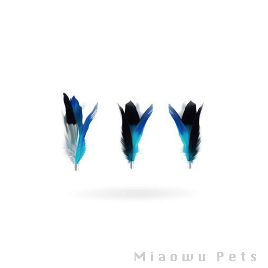 Pidan Teaser Feather Accessories - A2