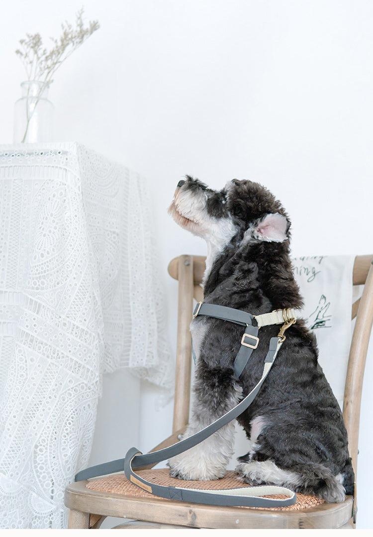 THAT&WONG X-type dog harness