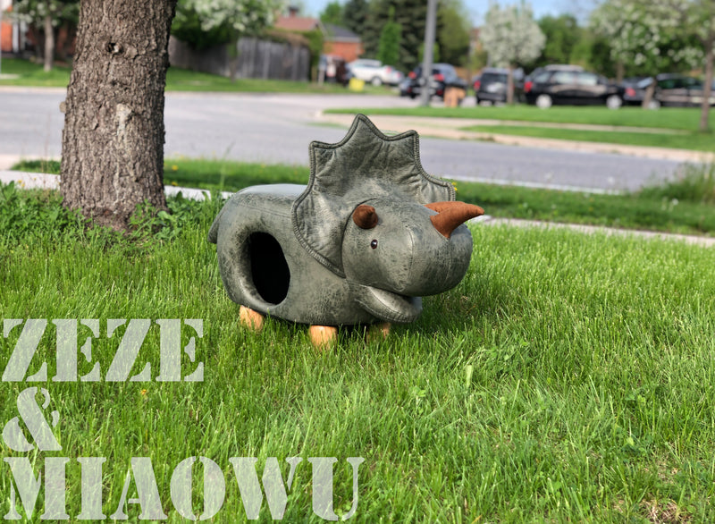 Zeze Dinosaur animal cat house
