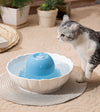 Pet ceramic water feeder