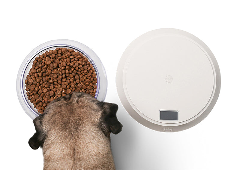 Pidan Pet Food Bowl with Digital Scale