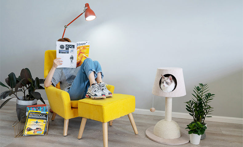 Zeze Lamp shape cat house