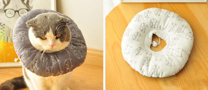 Cartoon Elizabethan Collar