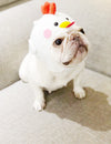 Pet chick hat