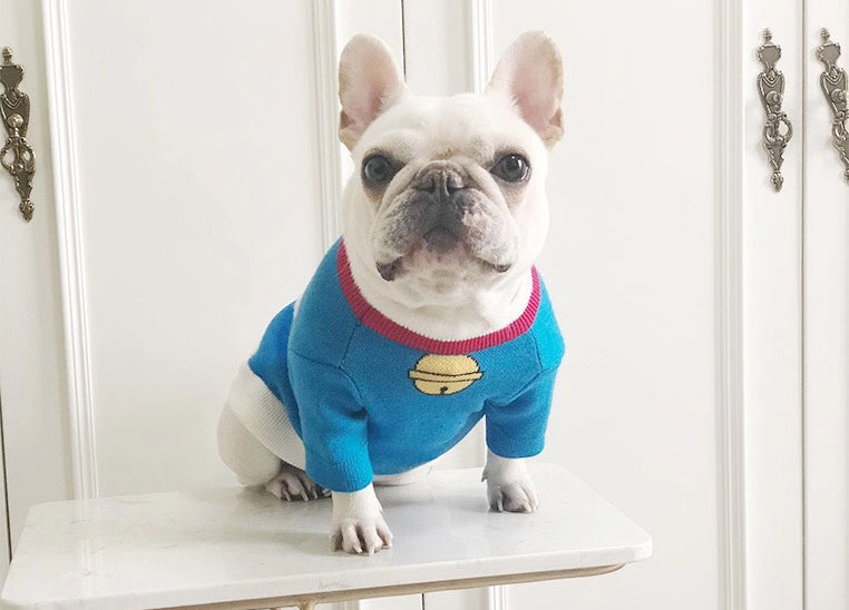 Pet Doraemon sweater