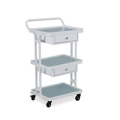 Salon Trolley Yurik