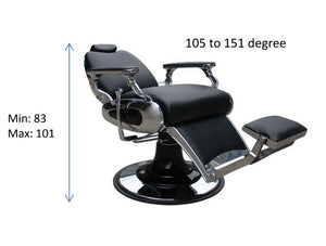 Barber Chair Prince