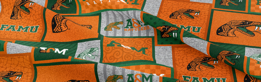 NEW NCAA / FLORIDA A&M