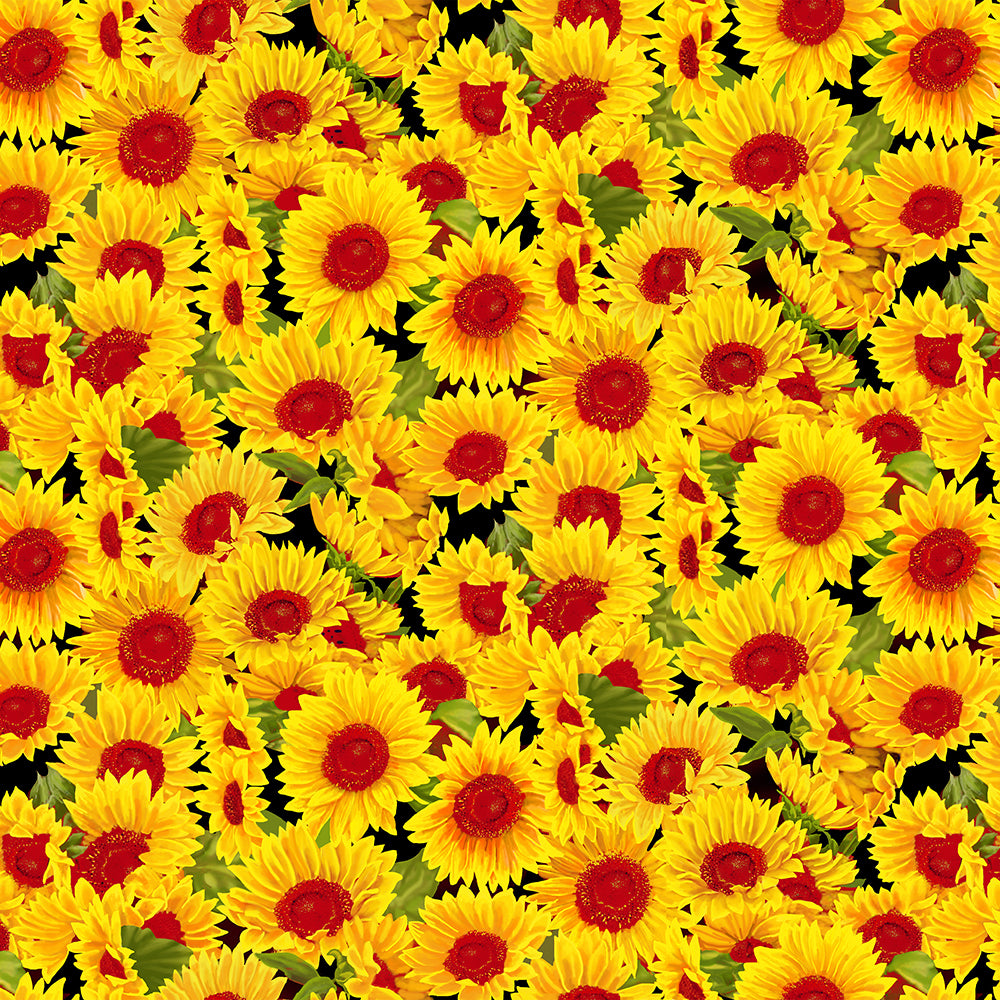 PACK SUNFLOWERS-10357 Cotton