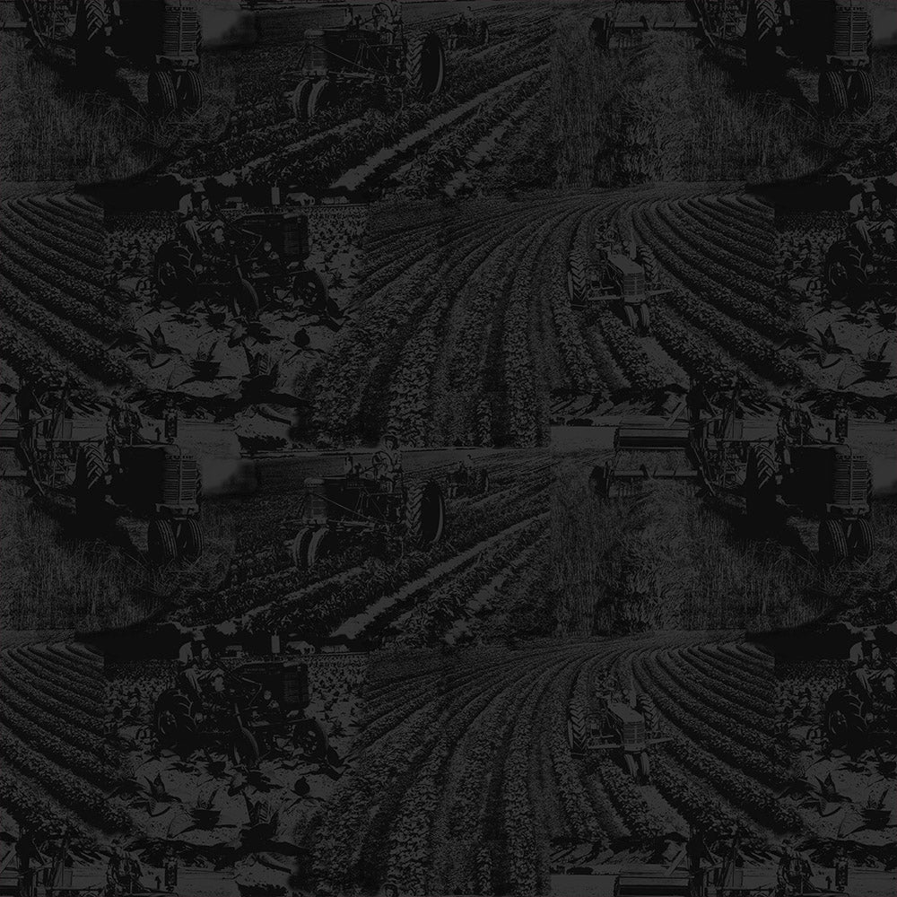 FARMALL TOILE-BLACK / COUNTRY LIVING-10298-Black Cotton