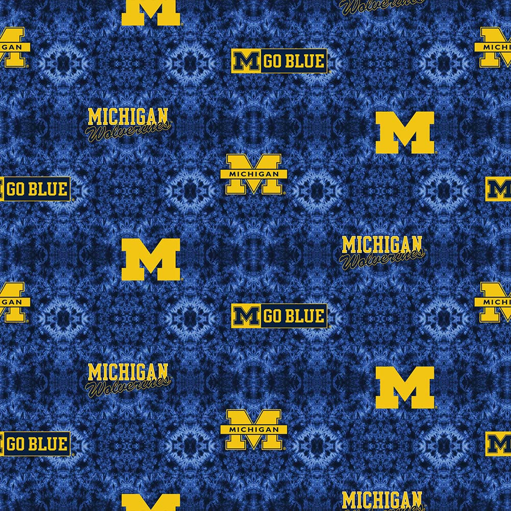 UNIV. OF MICHIGAN-1191