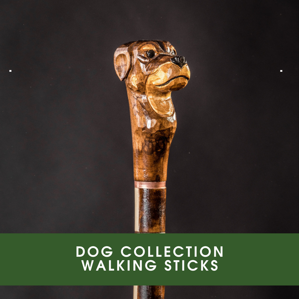 DOG COLLECTION WALKING STICKS