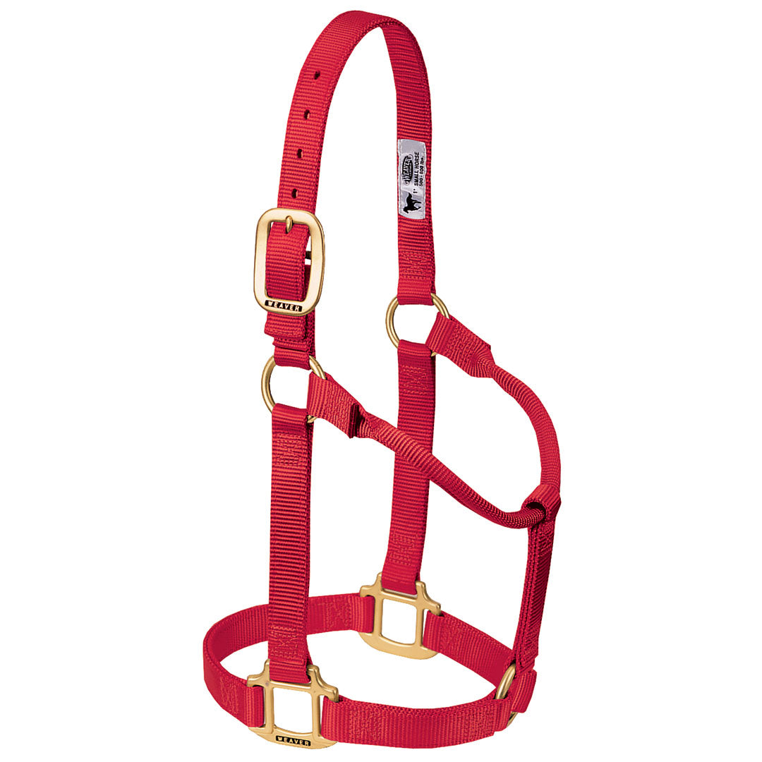 "Weaver Original Non-Adjustable 3/4"" Pony Halter"