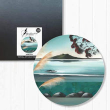 Load image into Gallery viewer, Indoor/Outdoor Art Circles - NZ Seascapes | NZ Art Designs