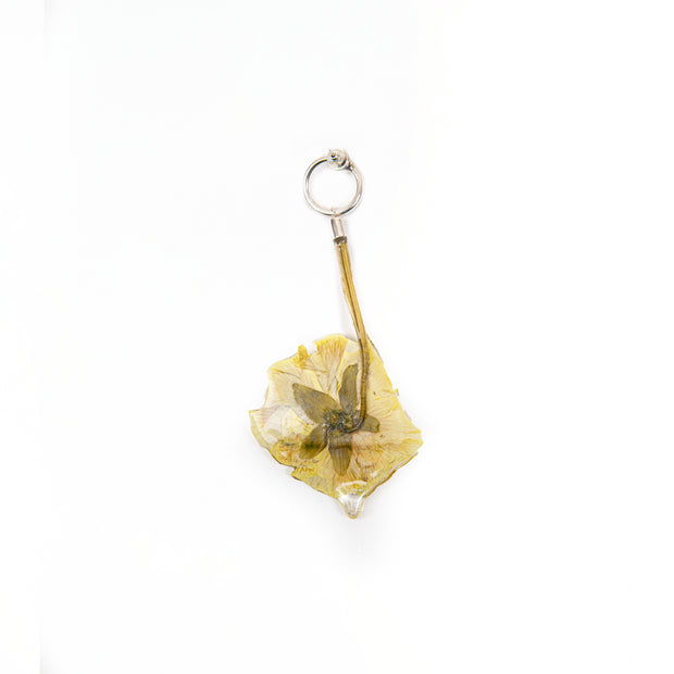 Emily Frances-Barrett, Pressed Flower Earring 7