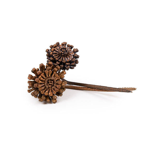 Emma Witter, Copper Bone Flowers, 2020